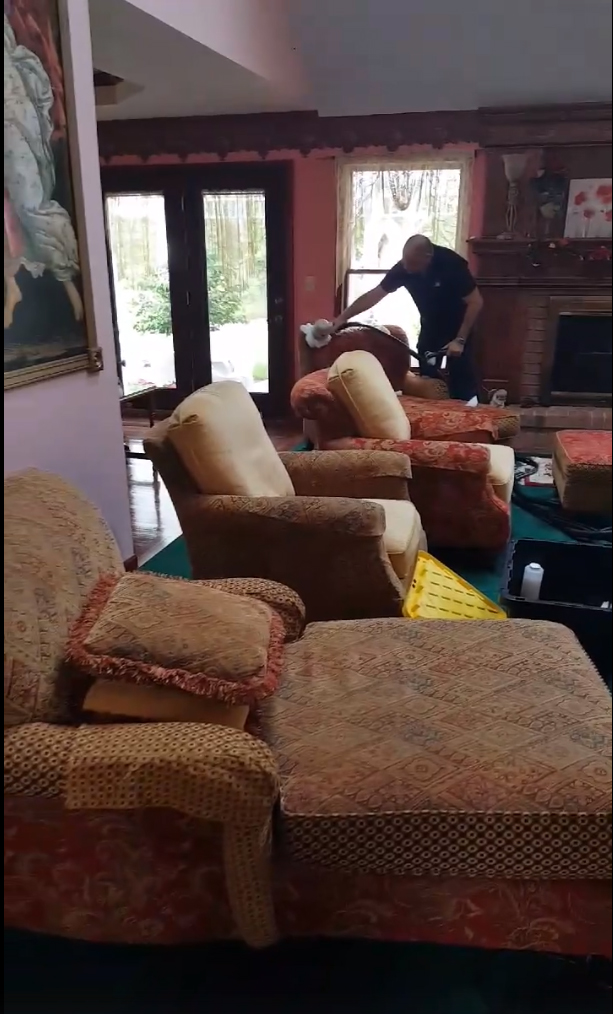 Furniture Cleaning Profitable